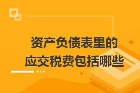 企业会计准则变化_资产负债表里的应交税费包括哪些_快账